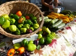 Front Street  Farmer's Market