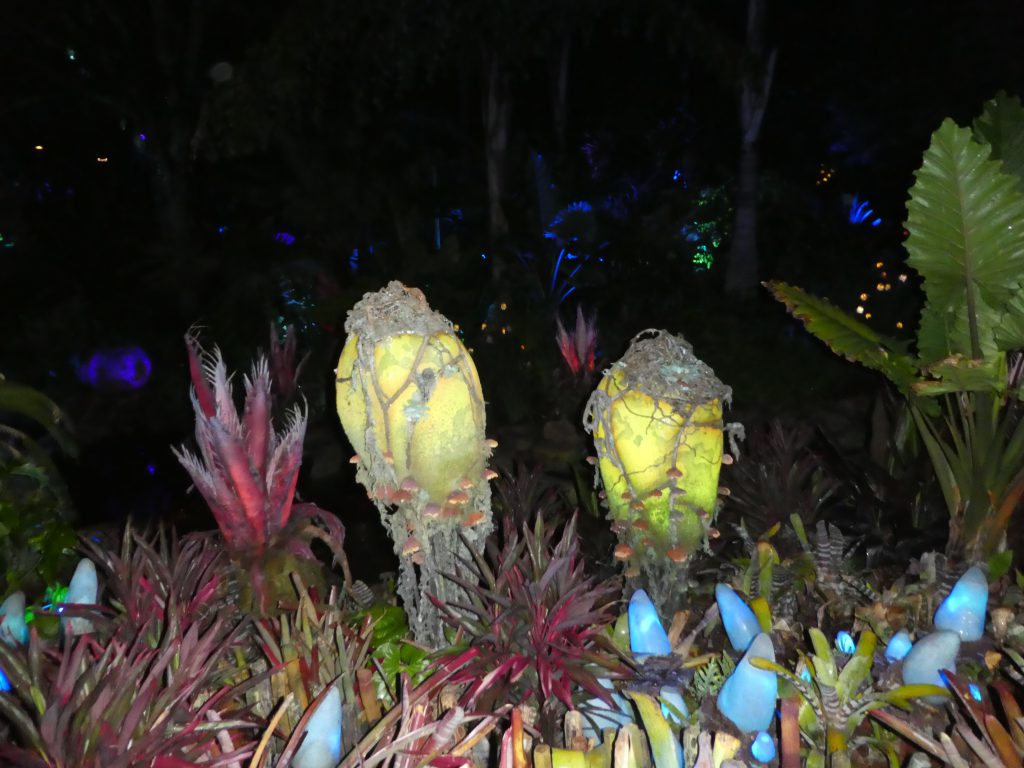 Pandora The World Of Avatar At Walt Disney